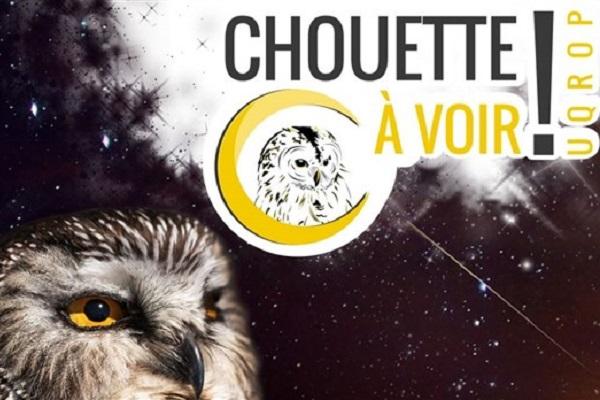ANIMATION ÉDUCATIVE | CHOUETTE À VOIR
